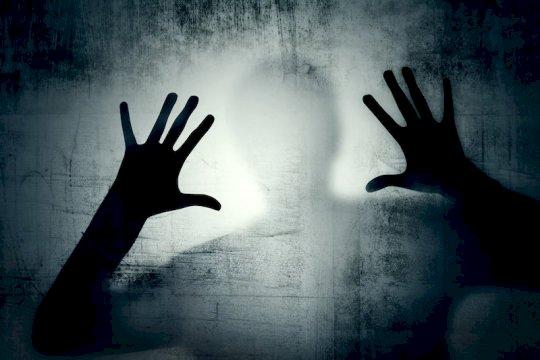 意外的不确定性可能导致妄想症
